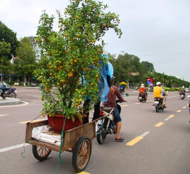 Dịp Tết lao động nghèo chạy xe ba gác đang chạy đua kiếm tiền lo sắm Tết