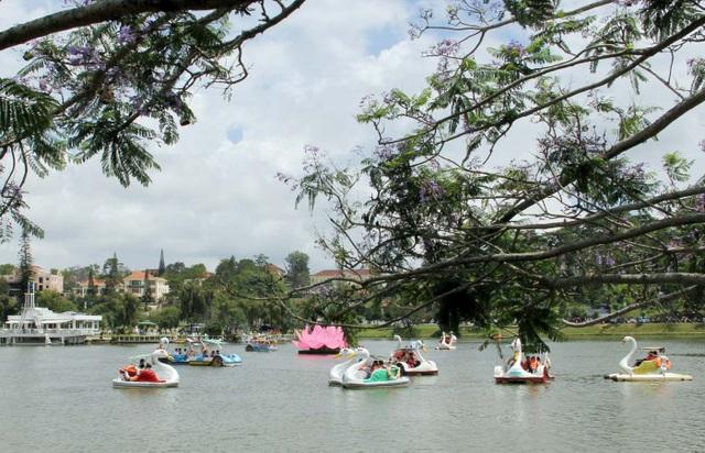 Du khách đạp vịt vãn cảnh trên hồ Xuân Hương- Đà Lạt