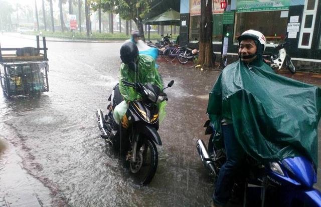 Trong khi đó, một số con đường trong nội thành phố Quy Nhơn (Bình Định) cũng bị ngập nước do mưa lớn.