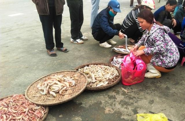 Ngoài cá khoai, tôm he và bề bề cũng được nhiều người tìm mua