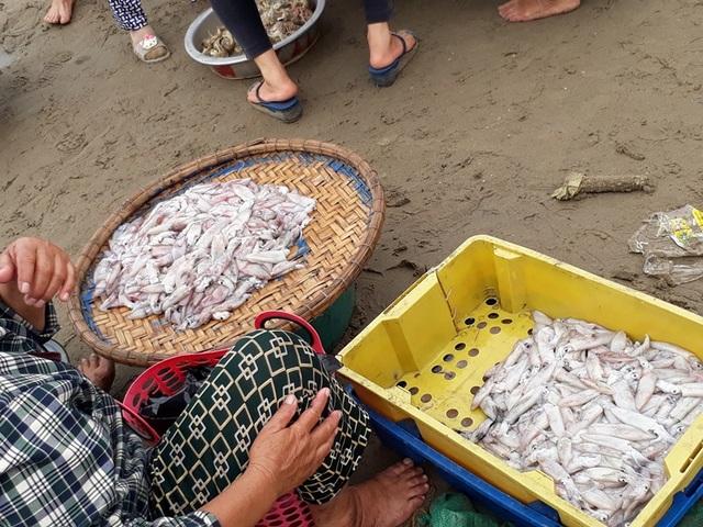 Ngư dân chào bán những sản phẩm vừa thu hoạch từ biển về