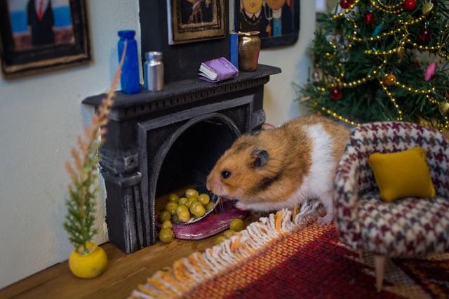 """Khắp """"khu phố ổ chuột"""" là đồ ăn để các chú chuột thêm hứng thú với việc diễn xuất."""