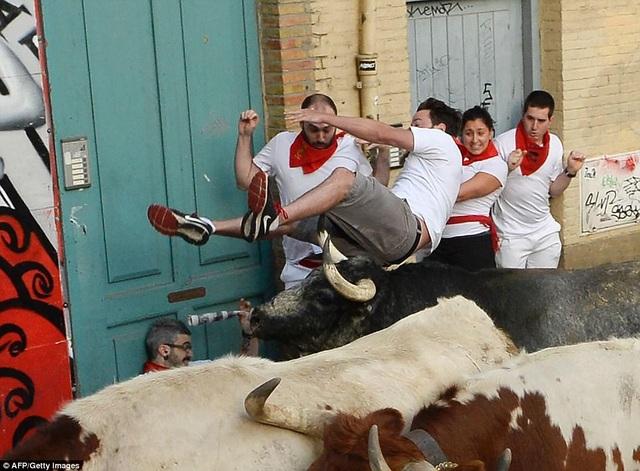Một người đàn ông bị bò tót húc bay về phía sau.