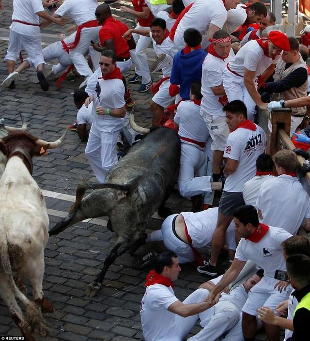Sau ngày đua bò đầu tiên, có từ 4 tới 6 người bị thương, nhưng phía bệnh viện của thành phố Pamplona khẳng định không có du khách nào bị thương nặng.