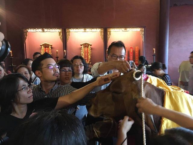 Lễ vật ở đây là một con bò, một con dê và một con lợn. Bộ lông của những con vật này được gọi là Bộ lông của sự thông thái. Do đó, ai cũng muốn có một sợi lông để lưu giữ mang lại sự may mắn cho mình.