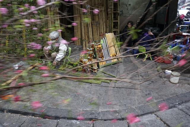 Một chiếc xe chở hoa đào lướt qua góc phố Hàng Vải cổ kính.