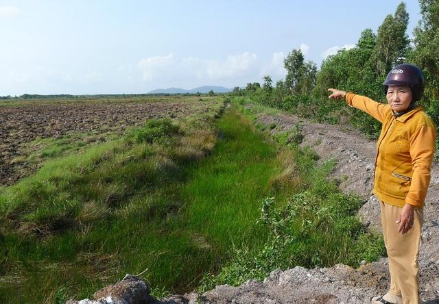 Bà Trần Thị Hường cho biết, để cải tạo mảnh đất từ hoang hóa, phèn mặn, thành mảnh đất trồng lúa 2 vụ như hiện nay, 5 chị em bà đã tốn không biết bao nhiêu công sức và tiền của đổ xuống mảnh đất