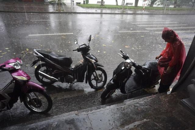 """Hà Nội trong cơn mưa giải nhiệt """"quý hơn vàng"""" - 8"""