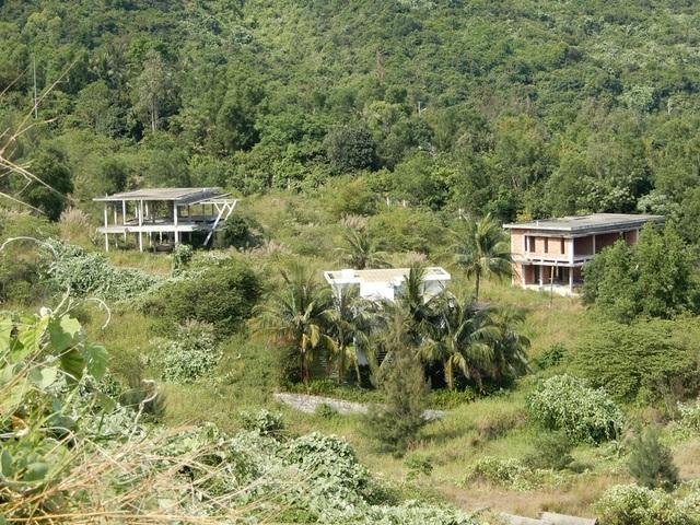 Ở phía dưới, chỉ có vài ba khung nhà biệt thự được dựng lên, chơ vơ giữa rừng.