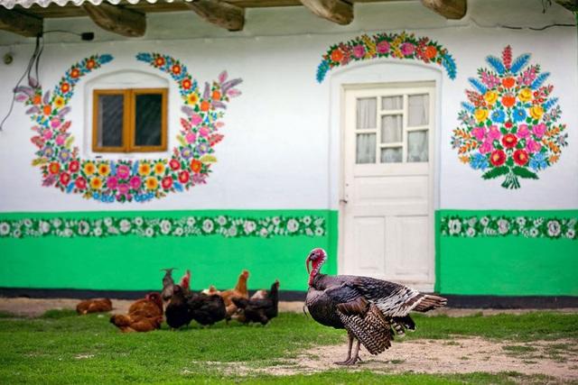 Làng Zalipie từng một thời rất hoang vắng, ảm đạm, bị thời gian bỏ quên, nhưng kể từ khi những người phụ nữ trong làng quyết định cùng nhau thay đổi diện mạo làng Zalipie, ngôi làng ở miền nam Ba Lan ngày càng trở nên nổi tiếng.