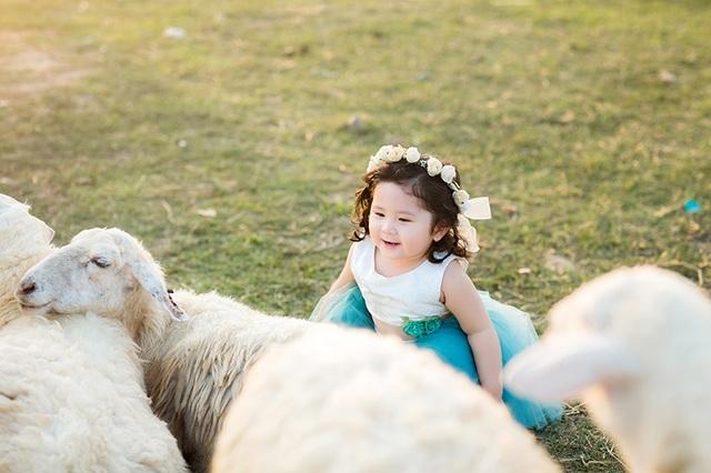 Mimi rất thích khi gặp đàn cừu, bé ôm lấy vuốt ve và hôn những chú cừu đáng yêu.