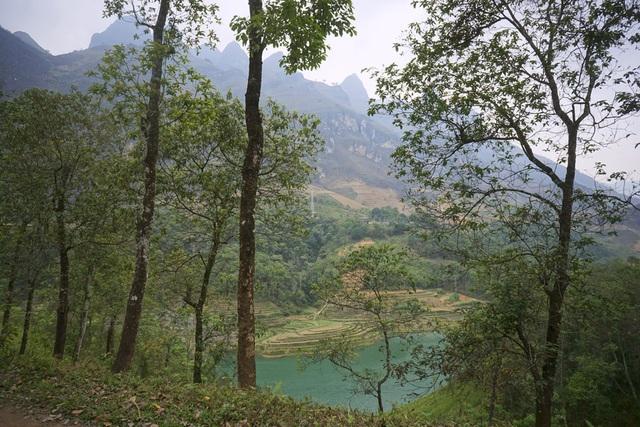 Một đoạn sông chảy qua vạt rừng thuộc xã Xín Cái (huyện Mèo Vạc).
