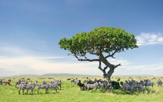15 quốc gia sở hữu vẻ đẹp tự nhiên ấn tượng nhất thế giới - 8