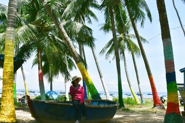 Những cây dừa ở Tam Hải được khoác áo mới