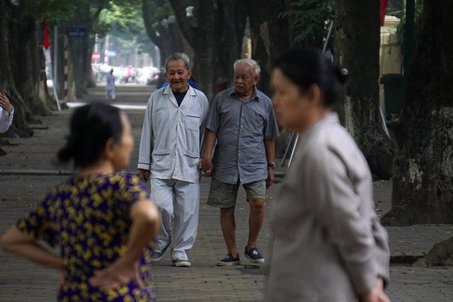 Người già bách bộ dưới hàng cây sấu tuyệt đẹp trên phố Phan Đình Phùng.