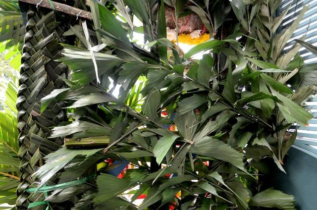 Nền cổng hoa được tạo từ cây lá Đủng đỉnh và lá dừa, một vật liệu rất quen thuộc ở cổng hoa miền quê Nam bộ.
