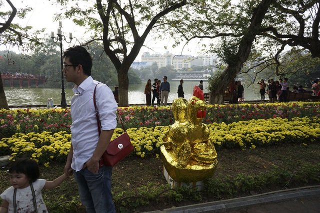 Con gà vàng của những người làm dịch vụ chụp ảnh ven hồ Gươm.