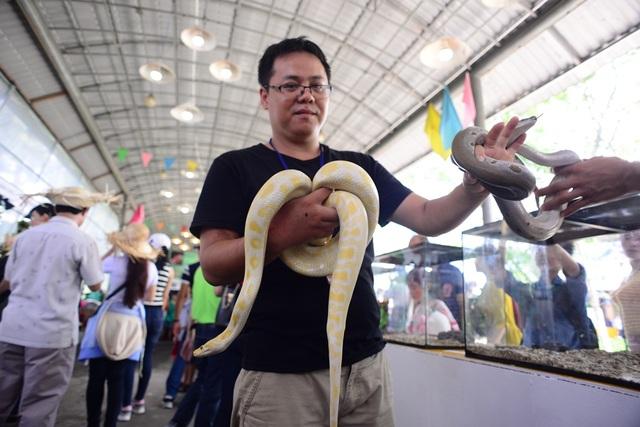 Anh Lộc đang cầm trên tay hai con trăn đất Việt Nam. Loài này có tên gọi khác là trăn đất Bạch tạng, một dạng của trăn đất đột biến.