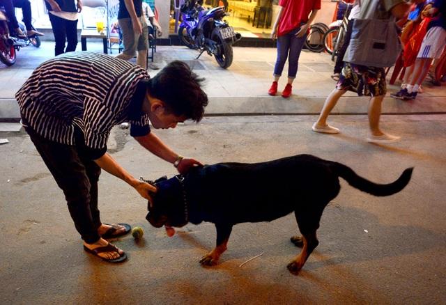 Một vài người dân dẫn theo chó đi dạo trên phố đi bộ Bùi Viện.