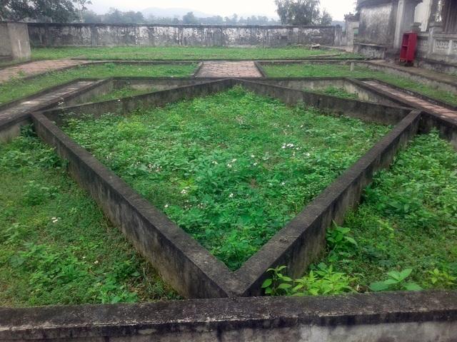 Khuôn viên trồng hoa nhường lại cho cỏ dại mọc.