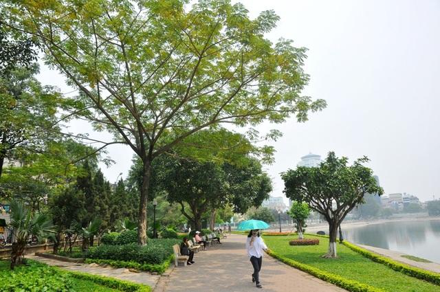 Toàn cảnh hồ Thành Công trước đề xuất cho lấp để xây nhà - 10