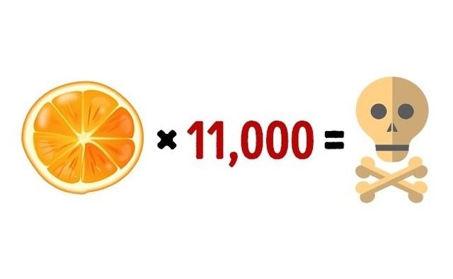 Những giới hạn của thực phẩm mà nếu vượt quá có thể dẫn đến tử vong - 8