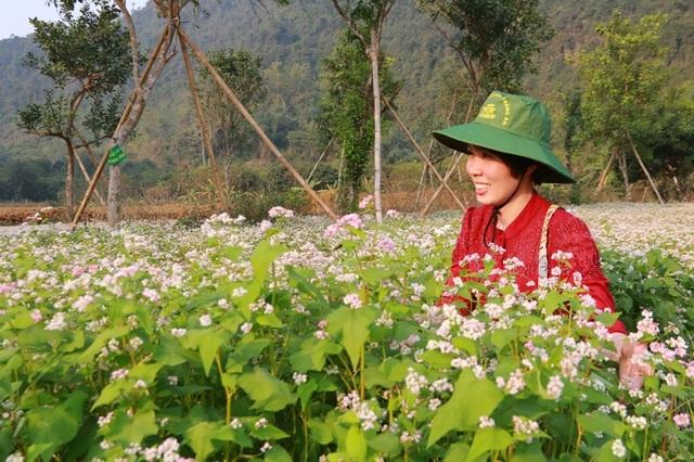 Vườn tam giác mạch Ninh Bình hút bạn trẻ dịp lễ Tình nhân - 9