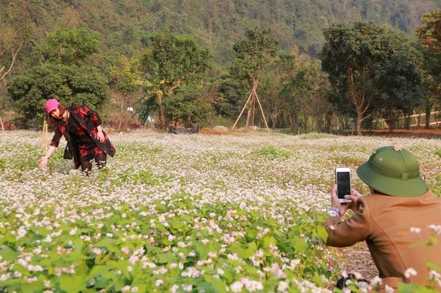 Từ nay đến ngày 8/3, vườn hoa tam giác mạch ở Thung Nham mới tàn nên mỗi ngày lại có đông thêm các bạn trẻ kéo đến đây để chiêm ngắm loài hoa này.