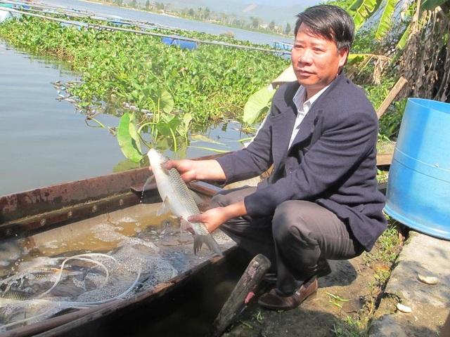Từ mô hình nuôi cá nước ngọt, mỗi năm anh Quân bỏ túi trên 300 triệu đồng