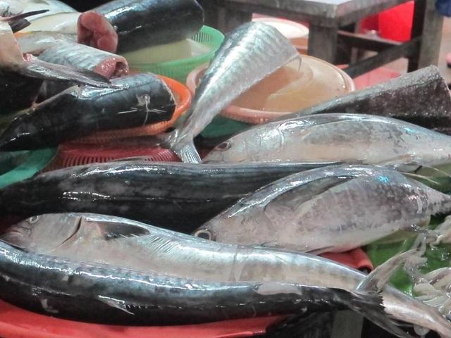 Cá thu có giá từ 200 - 250 ngàn đồng/kg