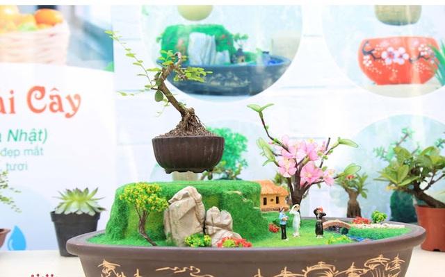 """Tất cả cây bonsai mini đều có thể làm bonsai """"bay"""". Tuy nhiên những loại cây như sâm núi, mây chấn thủy, sen đá, xương rồng, tắc... là những cây được khách hàng ưu chuộng nhất vì dễ chăm sóc"""