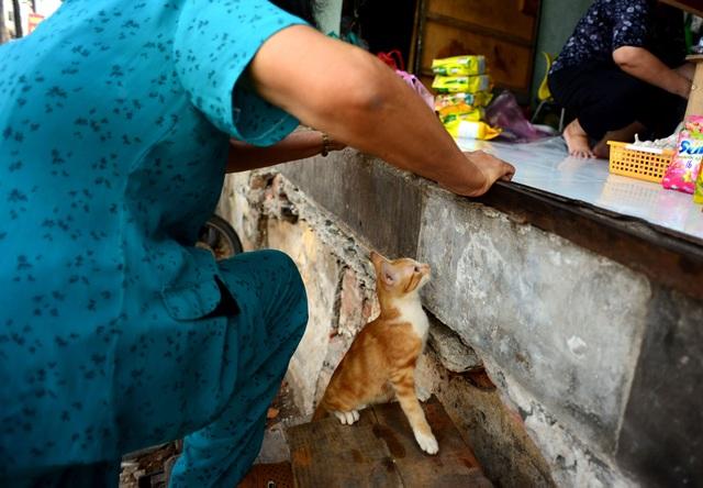 """Bà Nguyễn Thị Ty (54 tuổi) cho biết: """"Từ khi không còn bậc tam cấp, tôi ít dám lên xuống nhà vì sợ bị té""""."""