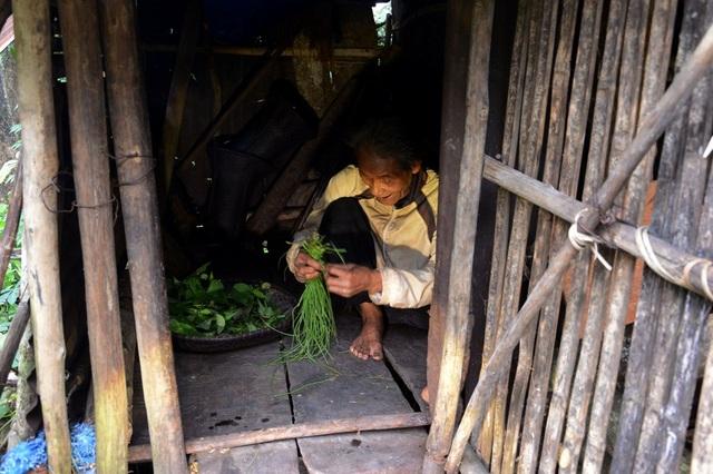Rau xanh là thực phẩm chính ông lão ăn hằng ngày, bên cạnh đó ông cũng tự tạo một số loại bẫy nhỏ để bắt thú rừng (chuột, sóc, chim…) cải thiện bữa ăn.