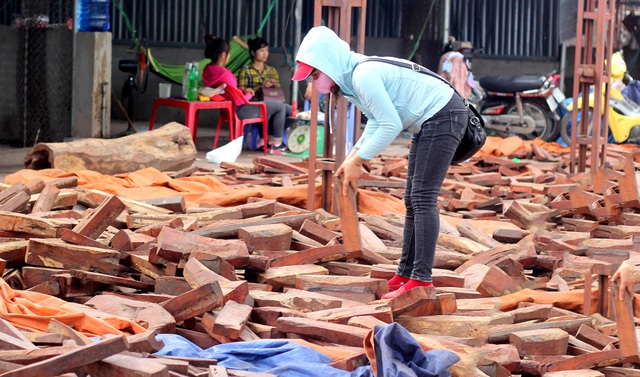 Về Bắc Ninh xem khu chợ gỗ quý tiền tỉ bán theo cân - 8
