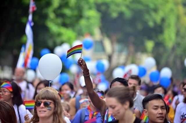 Mọi năm, hoạt động của ngày hội chỉ dừng ở đạp xe, tuy nhiên khi phố đi bộ được đưa vào hoạt động từ năm ngoái, các bạn trẻ thuộc cộng đồng LGBT và những người ủng hộ có thêm một khoảng không gian diễu hành mới.