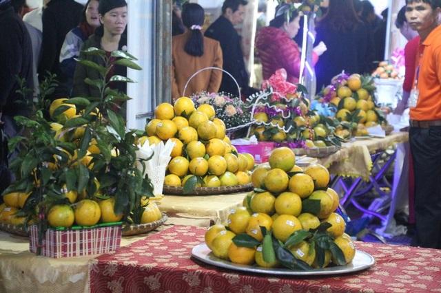 Lễ hội chủ yếu giới thiệu các sản phẩm cam nổi tiếng trên địa bàn Hà Tĩnh như Cam Sơn Thọ (huyện Vũ Quang), Cam Khe Mây (huyện Hương Khê)...