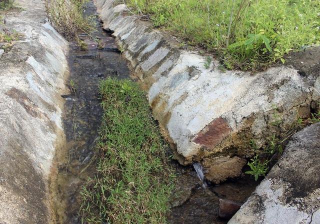 Nước thấm dưới chân đập chảy thành dòng