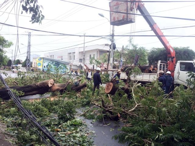 Cắt những cây xanh ngã đổ vào đường dây điện