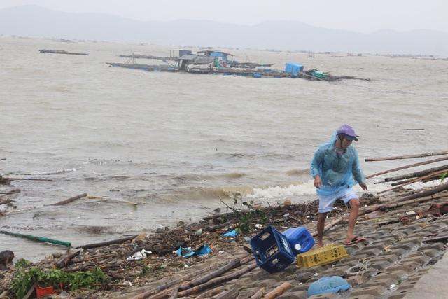 Hàng nghìn lồng bè nuôi tôm hùm và các loài thủy sản khác tại huyện Đồng Xuân bị thiệt hại