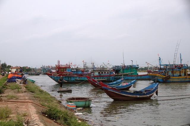 Ngư dân neo đậu tàu thuyền an toàn