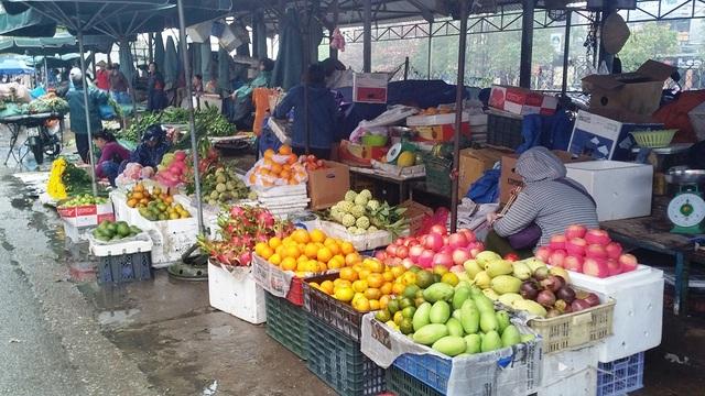 """Nhiều loại trái cây, hoa trước tết """"hút hàng"""" sau Tết đã có hàng trở lại, tuy nhiên giá đã giảm"""