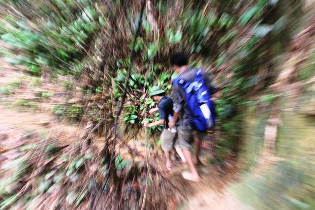 Vượt rừng sâu.