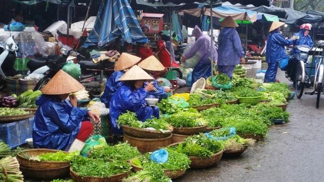 Rau xanh và củ quả được bán rất nhiều, giá giảm mạnh nhưng vẫn ế ẩm