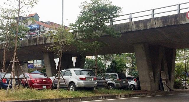 Xe ô tô đỗ kín khu vực gầm cầu, ảnh hưởng tới thảm cỏ, cây xanh trồng trên dải phân cách.