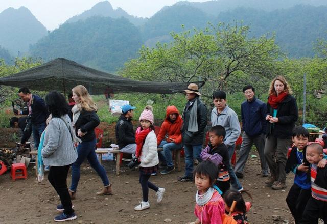 Từ trên đèo nhìn xuống, thung lũng mận Nà Ka nở theo từng khu và khá rải rác. Tuy nhiên các đoàn khách vãn cảnh vẫn nườm nượp đổ về gây tắc nghẽn đoạn đường dẫn vào thung lũng.
