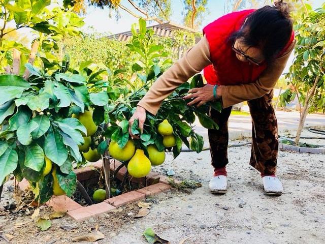 Bằng Kiều thích trồng cây trái đậm chất Việt để luôn nhớ về quê hương.