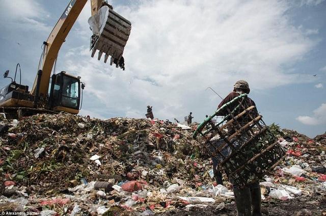 Người lao động mưu sinh trên rác