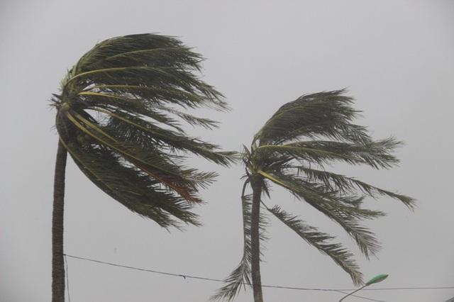 Gió mạnh tại thị trấn Cửa Tùng, huyện Vĩnh Linh thời điểm giữa chiều khi bão đổ bộ