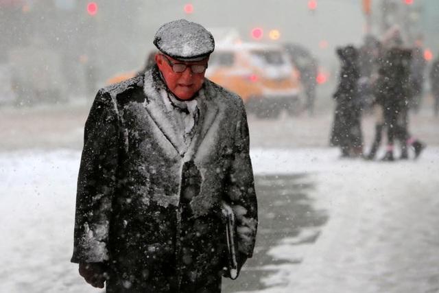 Tuyết rơi dày 30cm đã được ghi nhận ở nhiều nơi, cá biệt có những nơi tuyết rơi dày tới 1,5m như tại Ludlow, bang Massachusetts