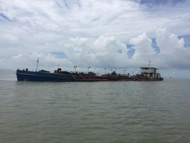 """Bắt giữ 8 tàu vươn vòi """"bạch tuộc"""" hút cát trên vùng biển TPHCM - 1"""